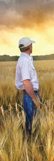 Recognizing mental illness in farmers and veterinarians is a study at the University of Guelph.