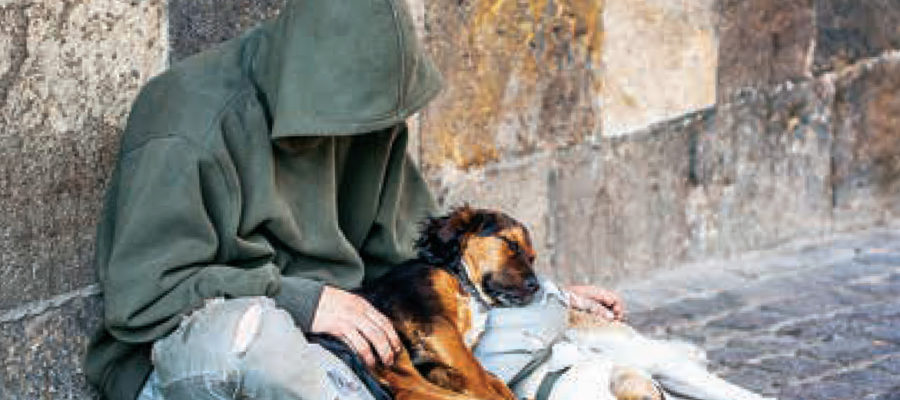 Homeless youth and pets