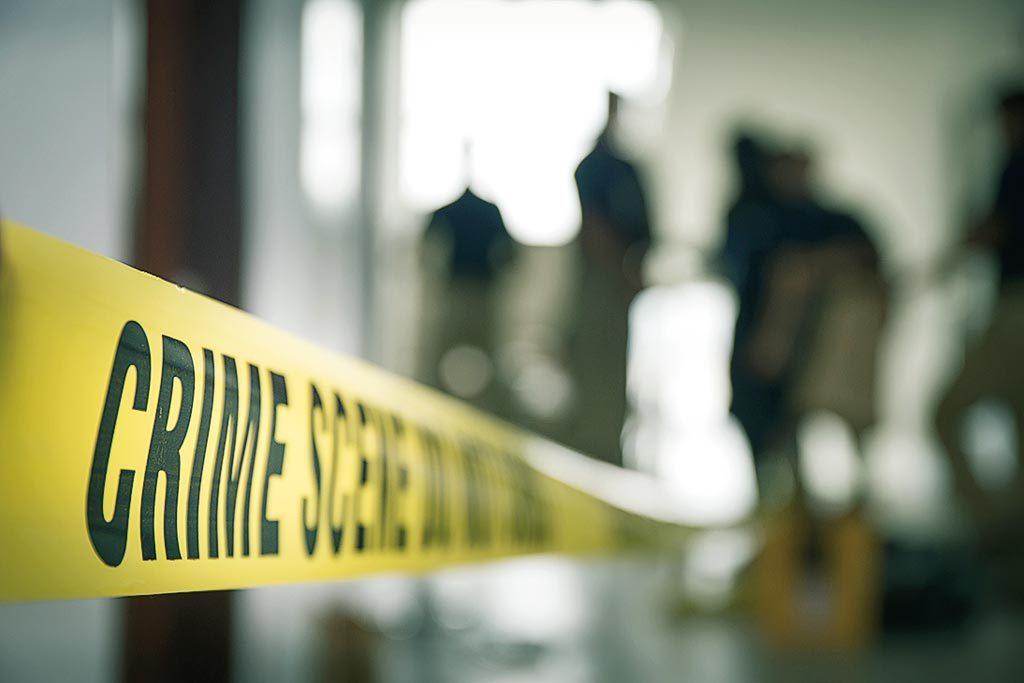 Revealing domestic homicide study