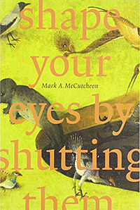shape your eyes by shutting them book